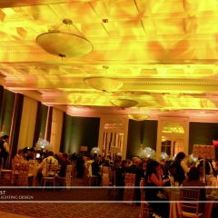 Wedding led uplighting at 317 on Rice Park 1