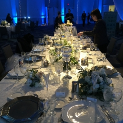 Pin spots on head table with blue LED uplighting