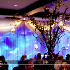 Wedding led uplighting at Brackett's Crossing 6