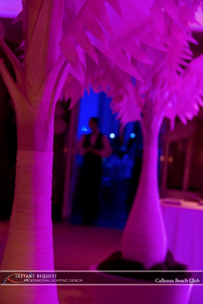 Minneapolis wedding led uplighting at Calhoun Beach Club 2