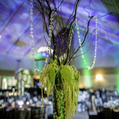 Wedding Uplighting at Dellwood Hills 12
