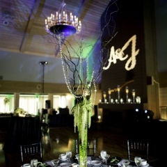 Wedding Uplighting at Dellwood Hills 25
