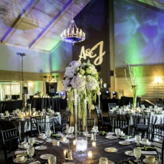 Wedding Uplighting at Dellwood Hills 27
