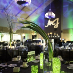 Wedding Uplighting at Dellwood Hills 5