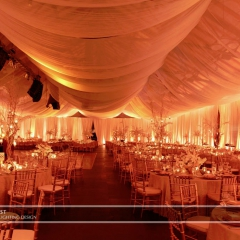 Joe Mauer Wedding - Uplighting