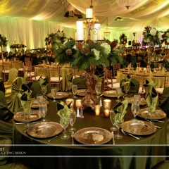 Corporate Event - Green LED uplighting