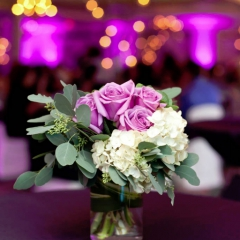 Wedding led uplighting at Edina Country Club 3