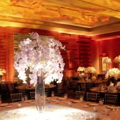 Wedding led uplighting at Loews Hotel 2