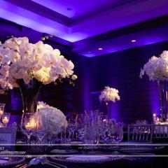 Wedding led uplighting at Loews Hotel 4
