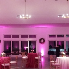 Pink uplighting at Hutton House for engagement party