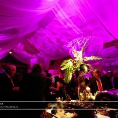 Wedding led uplighting at Interlachen  1