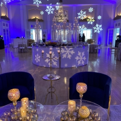 Snowflakes-blue-1