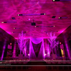 Wedding led uplighting at McNamara 10