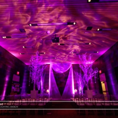 Wedding led uplighting at McNamara 11