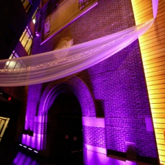 Wedding led uplighting at McNamara 19