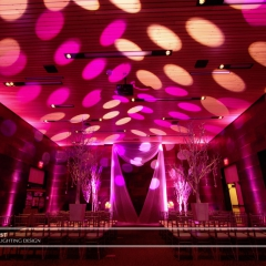 Wedding led uplighting at McNamara 9