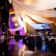 Wedding led uplighting at McNamara 23