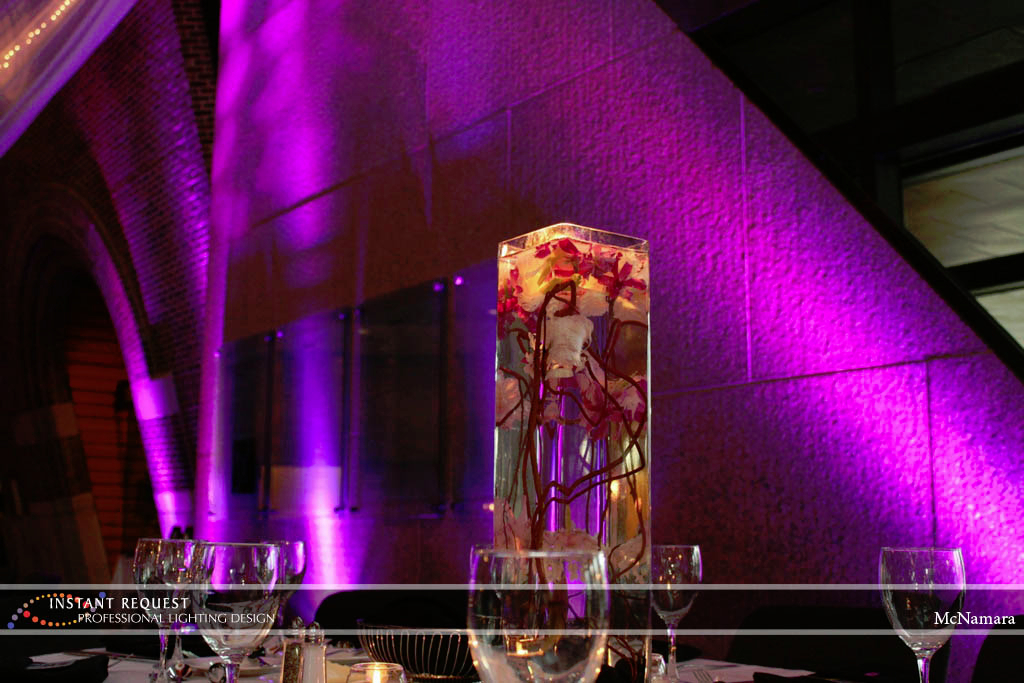 Wedding led uplighting at McNamara 2