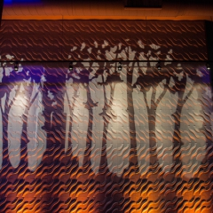 Skinny trees image projection