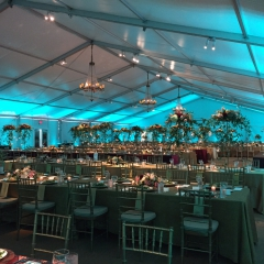 Tent-tiffany-blue-with-pin-spots
