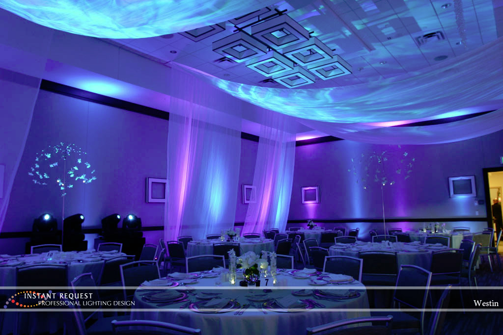Wedding led uplighting at Westin 4