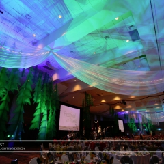 Wedding led uplighting at Xcel Energy Center 2